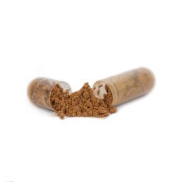 Ubiquinole Q10+ capsule